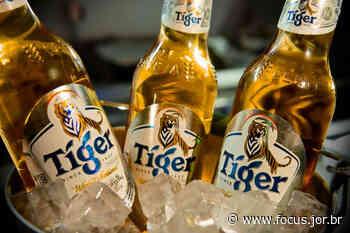Heineken vai produzir cerveja Tiger na Pacatuba - Focus.Jor