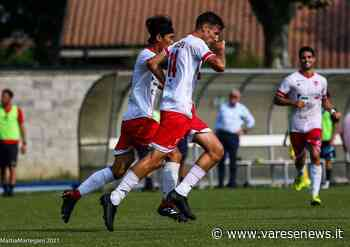 Il Varese sorride nell'ultima trasferta: 2-0 a Chieri - varesenews.it