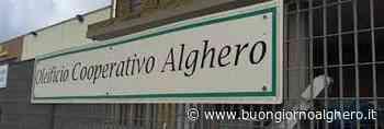 Oleificio Cooperativo Alghero: convocata l'assemblea ordinaria - BuongiornoAlghero.it