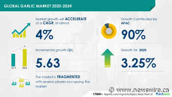 $ 5.63 Billion growth expected in Global Garlic Market 2020-2024 | Technavio