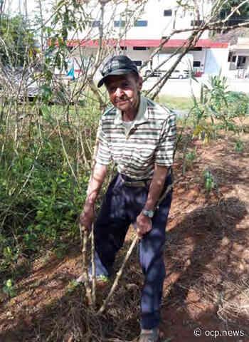 Nono Martini, de Guaramirim, completa 100 anos esbanjando saúde - OCP News