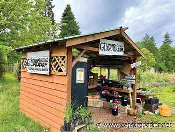 The Gibsons Farm is in Elphinstone - Coast Reporter