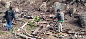 Costatan tala y quema de árboles nativos en serranía de Ybycuí - Nacionales - ABC Color