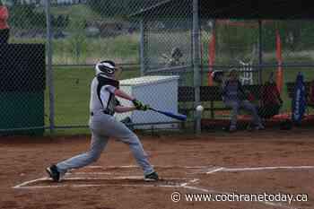 Cochrane Minor Ball kicks off season with a weekend of play - Cochrane Today