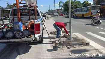 Conserto de semáforo na Augusto Montenegro motiva cancelamento de serviços de poda hoje em Belém - REDEPARÁ