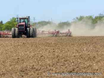 Cash crop farmers walking 'fine line' with varied weather - Goderich Signal Star