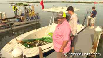 Crews clean up dead fish from red tide in Pinellas County