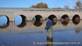 Río Atuel: en Algarrobo, un metro cúbico por segundo - El Diario de La Pampa