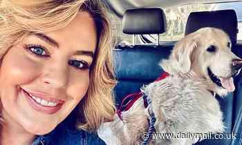 'Men don't like successful women': Bondi Vet's Dr. Kate Adams on her dating experience in Sydney