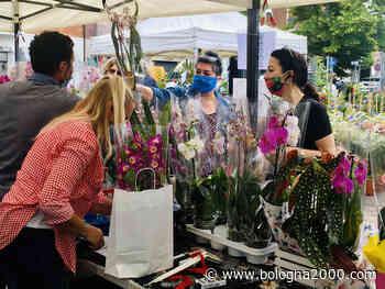 """Maranello in fiore, la piazza è """"green"""". Domenica 13 giugno la mostra mercato florovivaistica - Bologna 2000"""