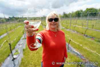 Five top Herefordshire vineyards to visit (it's a special week)