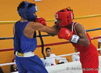 Anzoátegui este sábado con velada boxística para escoger selecciones Junior y Cadete a los Nacionales - Diario Vea