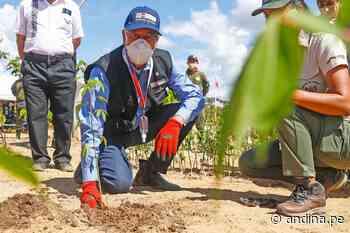 Gobierno culmina acciones de reforestación en la Reserva Nacional Tambopata - Agencia Andina