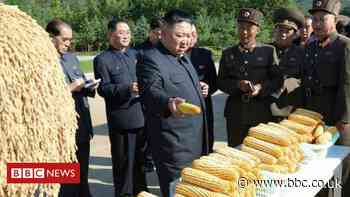North Korea: Why doesn't it have enough food this year?