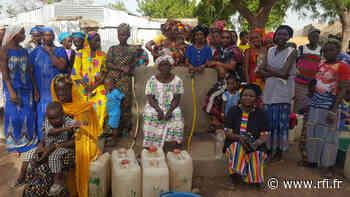 Le coq chante - La borne-fontaine du village de Patoulane, au Sénégal - RFI
