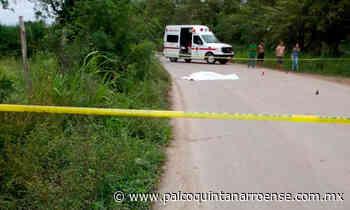 Asesinan a un sujeto en zona cañera cercana a Chetumal – Palco Noticias - Palco Quintanarroense
