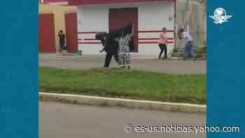 Abejas africanas atacan a pobladores en Chetumal - Yahoo Noticias
