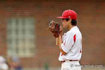 Sophomore spins no-hitter to send Stevensville Lakeshore to D2 final - MLive.com