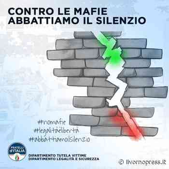 """Oggi a Cecina, il gazebo del partito della Meloni per dire """"No alle mafie"""" - Livorno Press"""