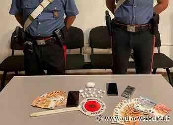 Droga nei luoghi della movida, un arresto - Qui News Cecina
