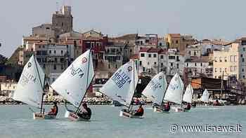 A Termoli c'è il Vela day, tutti al Circolo e in mare per provare - isnews