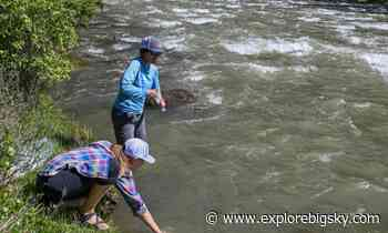 Low water on the Gallatin threatens river health - Explore Big Sky