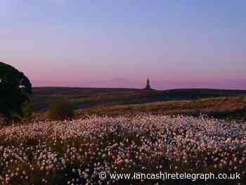 East Lancashire's natural beauty captured for you to savour