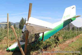 Plane crash lands into Grand Forks orchard, pilot injured – Quesnel Cariboo Observer - Quesnel - Cariboo Observer