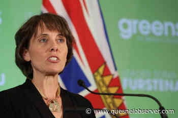 BC Green leader Furstenau introduces old-growth logging petition - Quesnel - Cariboo Observer