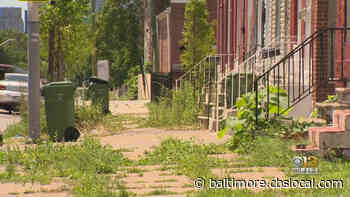 Police Charged Kevin Dudley In Murder Of Missing Baltimore Teen Kozee Spriggs - CBS Baltimore