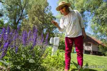 Manitou Springs initiative seeks pollinator-friendly certification | Lifestyle | gazette.com - Colorado Springs Gazette