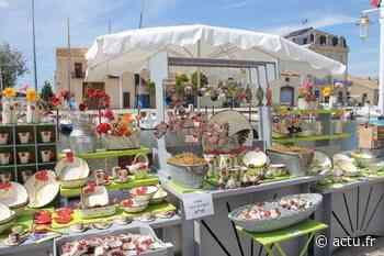 Marseillan : le marché des potiers fait son retour - actu.fr
