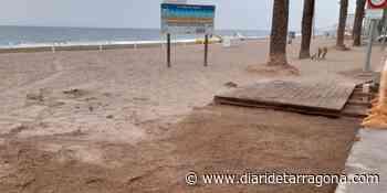 Retirada fulminante de contenedores en la playa de Calafell para acabar con un nido de ratas - Diari de Tarragona