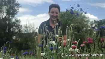 Laventie : tous en bottes ce week-end pour découvrir les fleurs d'Une petite graine - La Voix du Nord