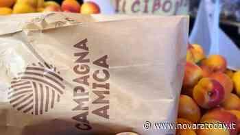 Trecate, torna l'appuntamento con l'Agrimercato di Campagna Amica - NovaraToday