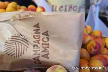 Trecate. Agrimercato di Campagna Amica, domani - Varesepress.info - varesepress.info