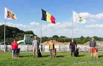 Hondenclub Kringgroep 40 Riemst organiseert BOP-wedstrijd - Het Belang van Limburg
