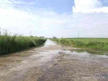 'Waterplassenproject' pakt overlast op ruilverkavelingswege... (Riemst) - Het Belang van Limburg Mobile - Het Belang van Limburg
