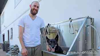 Dietzenbach: Naturkosmetik für den Vierbeiner: Marcel Jarchow stellt pflanzliche Pflegeprodukte für Hunde her - op-online.de