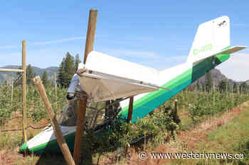 Plane crash lands into Grand Forks orchard, pilot injured – Tofino-Ucluelet Westerly News - Tofino-Ucluelet Westerly News