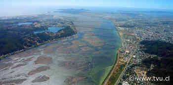 Alcaldes reciben documento para declarar santuario de la naturaleza al Río Biobío - TVU