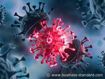 Maharashtra sees 8,912 new coronavirus cases, 257 deaths, 10,373 recover - Business Standard