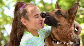 States move to stop insurance companies from discriminating against your dog - Yahoo Finance