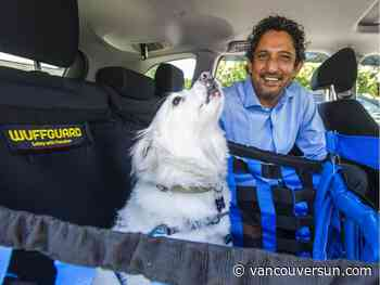 Wuffguard: Converting car seats into safe, comfortable dog seats in seconds