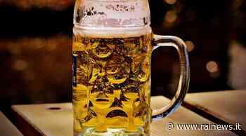 Bier und Fußball: Nordmazedoniens Fans trinken Bukarest fast leer - TGR Tagesschau - Rai News