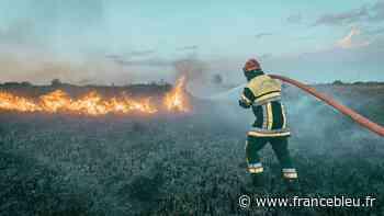 VIDÉOS - Incendie à Auriol : le feu ne progresse plus, mais il n'est pas fixé - France Bleu