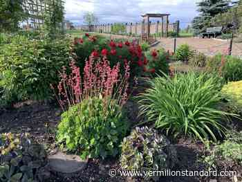 Calgary Horticultural Society: Go on tour to our favourite public gardens - Vermilion Standard