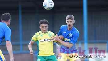 Norwich City: King's Lynn, Lincoln, Huddersfield friendlies - PinkUn