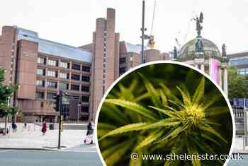 Man who grew cannabis faces court - St Helens Star