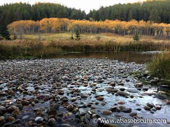 Cypress Hills Interprovincial Park – Maple Creek, Saskatchewan - Atlas Obscura